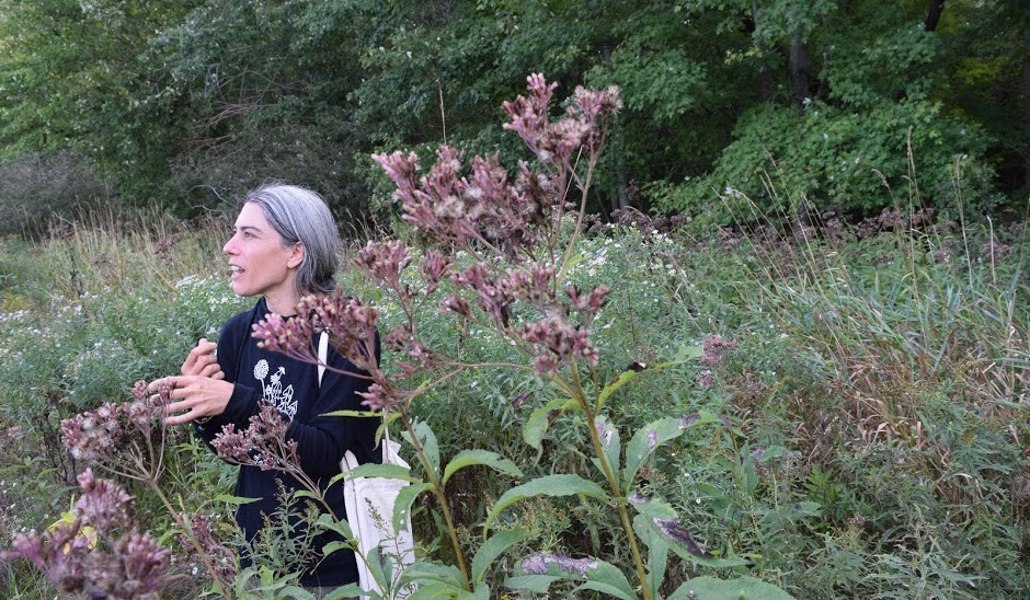 Experiential Herbalism: A Hands-On Course in Herbal Medicine – May-Oct 2021